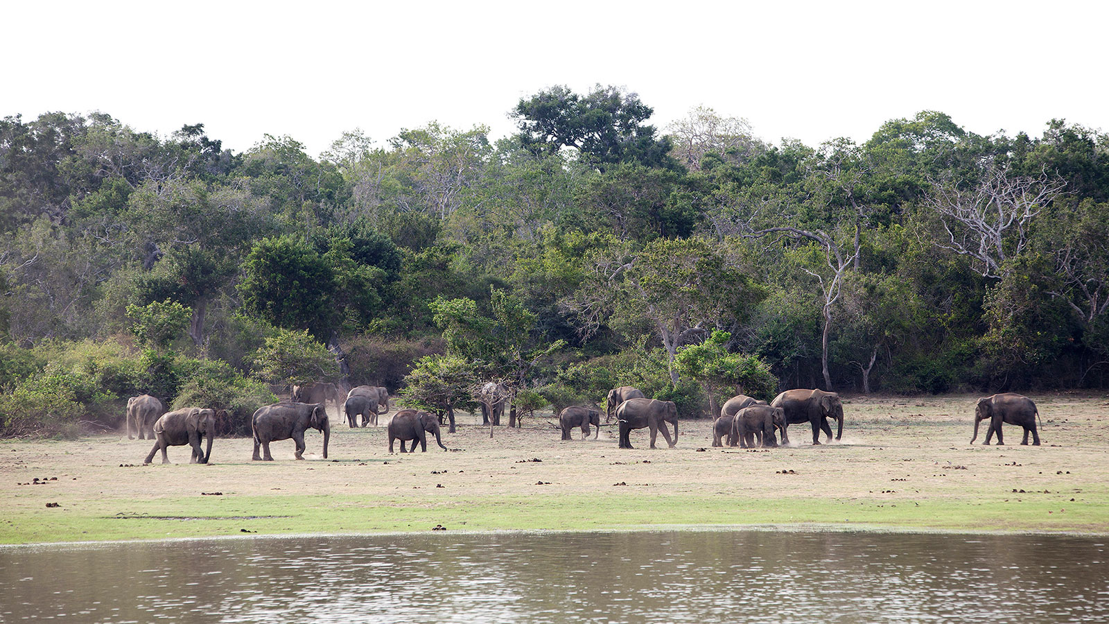 Lahugala National Park